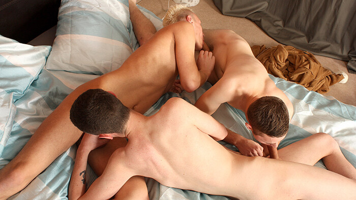 Reece Bentley, Scott Williams & Aiden Jason